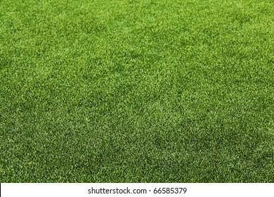 Artificial Grass Field Perspective View Shallow Depth of Field