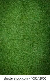 Artificial Grass Field Top View Texture.