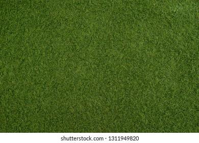 Artificial grass, texture pattern backgrounds.