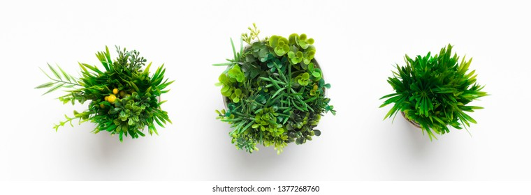 Artificial grassy plants in pots on white background, top view