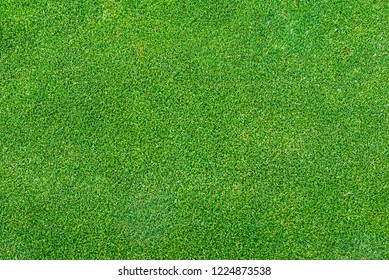artificial green grass field, texture of a golf course for sports background concept