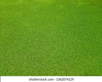 Artificial green grass top view background texture.