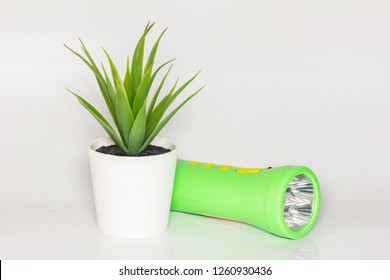 artificial green houseplant with torchlight isolated on white
