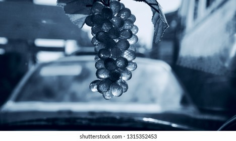 Artificial hanging grapes isolated showpiece object unique photo