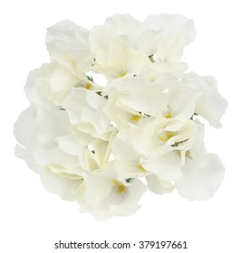 Artificial hydrangea flowers. Isolated on white