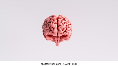 artificial intelligence concept with a floating brain model
