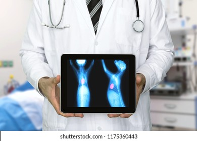 Artificial intelligence in smart healthcare hospital technology concept. Veterinarian doctor use AI biomedical algorithm detect heart disease , cancer cell in dog with digital filmless X-Rays process.