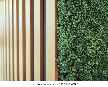 artificial ivy and wood wall