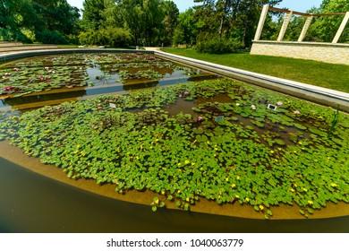 Artificial Lake in the Botanical Garden in Iasi. Romania.