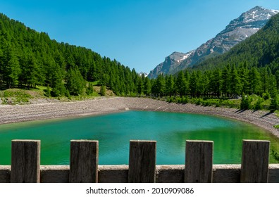 An artificial lake with green water surrounded by pine forest in Val Troncea, Pragelato, Italy