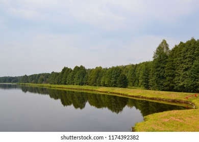 Artificial lake on the site of the former swamp in Belovezhskaya Pushcha