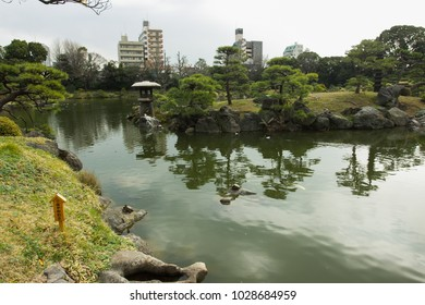 Artificial pond  in KIYOSUMI TEIEN park in TOKYO, JAPAN. Spring is coming.