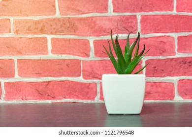 Artificial Potted Plants on Wooden Table.
