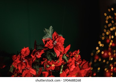 Artificial red velvet Christmas flowers Poinsettia in the design of Christmas decor.