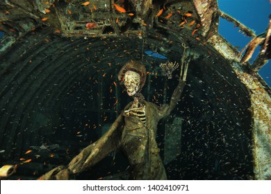 artificial skeleton pilot inside a Hercules C 130 aircraft and fish in the background
