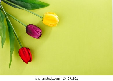 artificial tulips on a green background with place for label