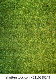 Artificial turf,Astroturf is a surfacing material used to imitate grass.