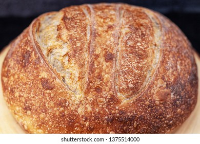 Artisan crusty loaf of freshly baked sourdough bread focaccia boule. traditional Homemade sourdough Boule bread with crust on a wooden board