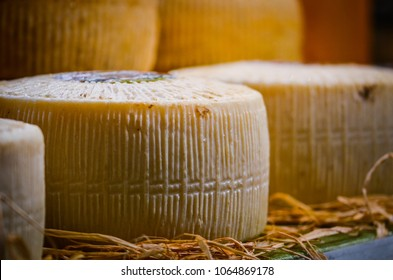 artisanal cheese close up view