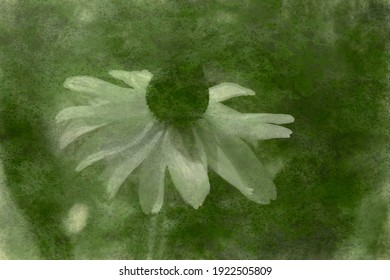 Artistic illustration of a flower with a textured background.