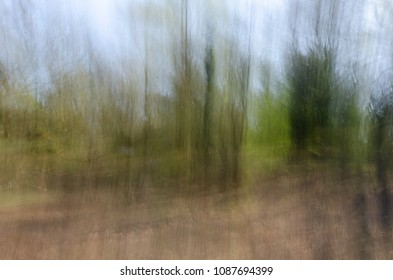 An artistic impression of the forest in lens blur - taken at Holmsley in the New Forest National Park