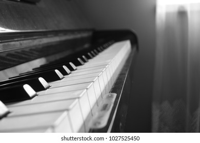 Artistic and laconic black and white close-up of piano keys