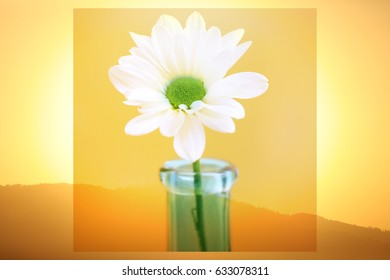 A artistic layer with a white daisy in a blue vase with a yellow sunset background.