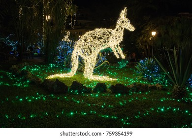 Christmas Kangaroo Lights.Christmas Kangaroo Images Stock Photos Vectors Shutterstock
