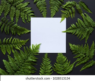 Artistic mockup for your artwork with beautiful flowers and leaves and empty card shot from the top. Flat lay minimalistic composition.