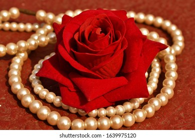 artistic rustic red rose on pearl necklace