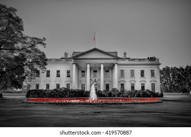 An artistic take on the front view of the white house and the fountain surrounded by flowers. Selective color technique was used.