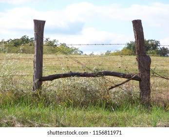 Artistic view of fences.