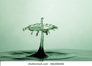 Artistic water drops colliding and creating a water crown on green background. Concept of calm, purity and serenity.