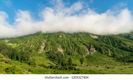 Artvin, Turkey - July 2018: Gorgit highland with old houses and green valley in Blacksea region, Artvin, Turkey