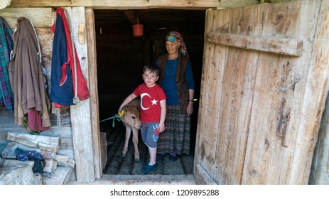 Artvin, Turkey - July 2018: Unidentified boy with his mother and a calf at the basement of their wooden home in Misirli village, Artvin, Turkey