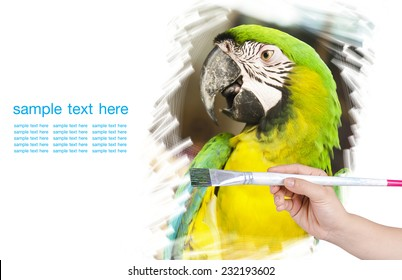 Artwork of drawing bird with paint brush