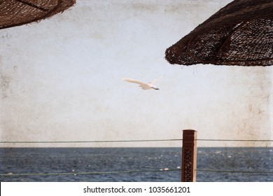 Artwork in retro style, bird flying away, sea, sky