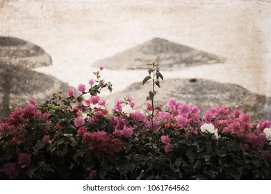 Artwork in retro style, flowers near a beach, summer