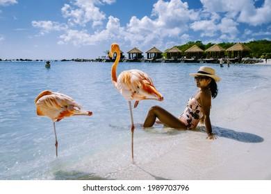 Aruba beach with pink flamingos at the beach, flamingo at the beach in Aruba Island Caribbean. A colorful flamingo at the beachfront, woman on the beach