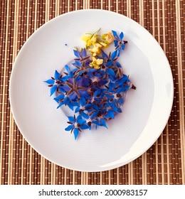 Arugula and borage blossoms for the fine salad - Shutterstock ID 2000983157