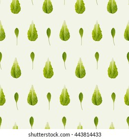 Arugula and lettuce seamless pattern. Combine to create endless size image