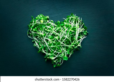 Arugula micro greens sprouts in shape of heart on dark blue background. Healthy eating micro greens concept