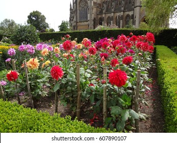 Arundel Castle gardens in West Sussex. Lovely purple, red, and orange flowers growing.