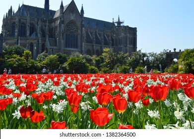 ARUNDEL, UNITED KINGDOM - APRIL 20, 2019: Annual Tulip Festival at Arundel Castle with thousands of flowers bursting into bloom throughout the beautiful gardens