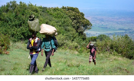 Arusha National Park, Kilimanjaro Province / Tanzania - 30. December 2015: local porters carrying gear and equipment hike towards the summit of Mount Meru in Arusha National Park in Tanzania