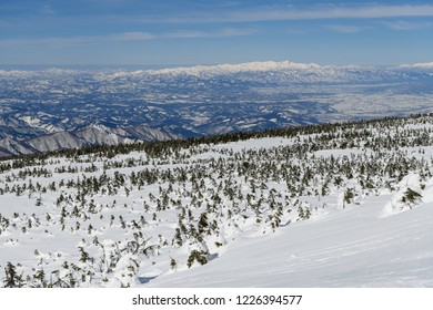 Asahi Mountain Range and coniferous forests of snowy field