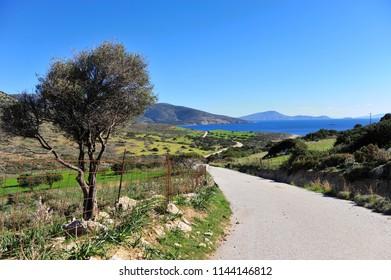 Ascent asphalt road by the sea on Naxos island, Cyclades, Greece