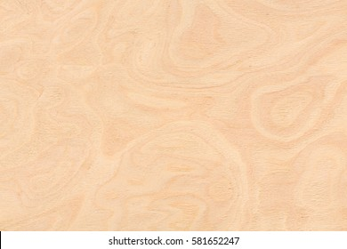 Ash burl design texture. Natural background closeup. Extremely high resolution photo.