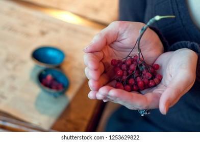 ashberries winter harvest