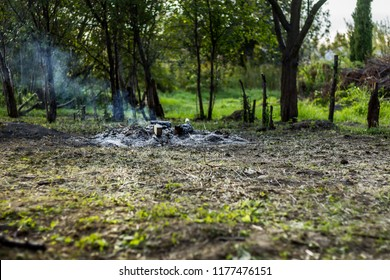 Ashes and remnants of a smoking  bonfire in the morning